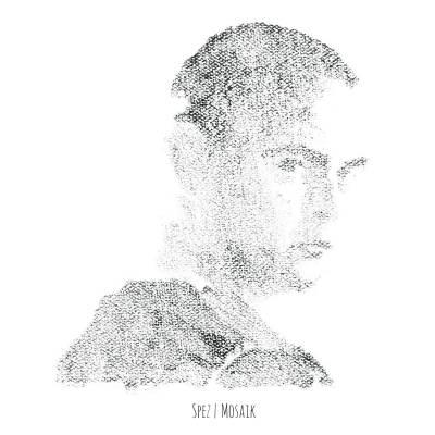 Spez — Mosaik (2014)